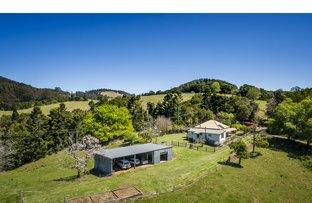1691 Coramba Road, Dorrigo NSW 2453