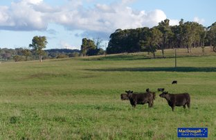 Picture of NeMonaVille, Walcha NSW 2354