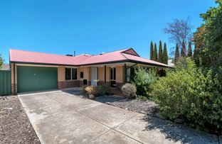 Picture of 18 Rifle Range Road, Greenwith SA 5125