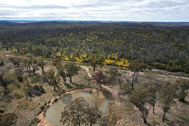 Picture of 12704 GOLDEN HIGHWAY, UARBRY NSW 2329