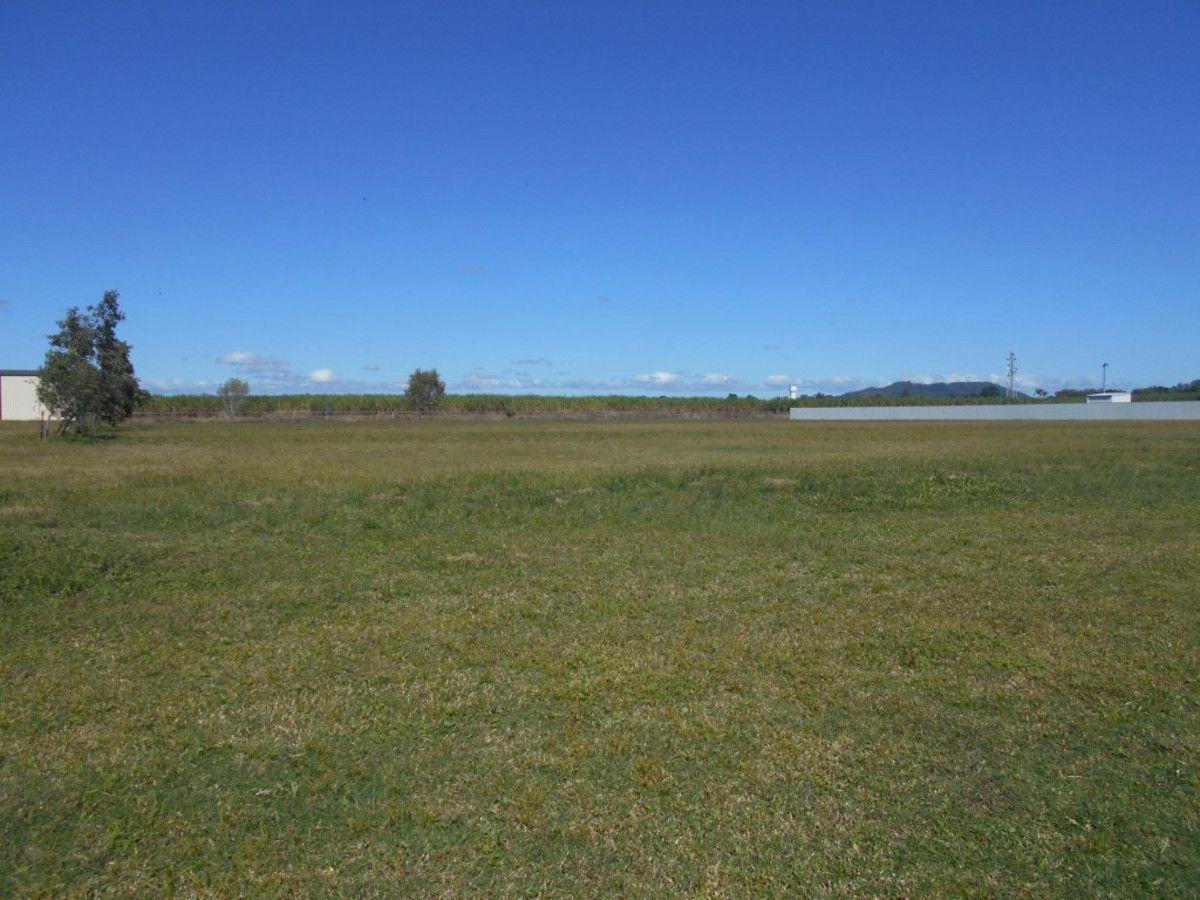 8 Riverdowns Drive, Halifax QLD 4850, Image 1