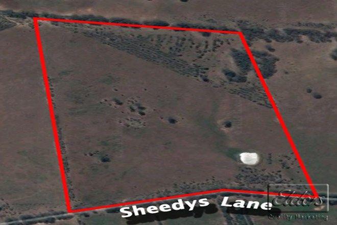 Picture of Lot 3 Sheedys Lane, DERRINAL VIC 3523