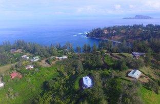 Hibiscus Drive, Norfolk Island NSW 2899