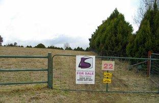 Picture of 3 Corriedale Avenue, Murrumbateman NSW 2582