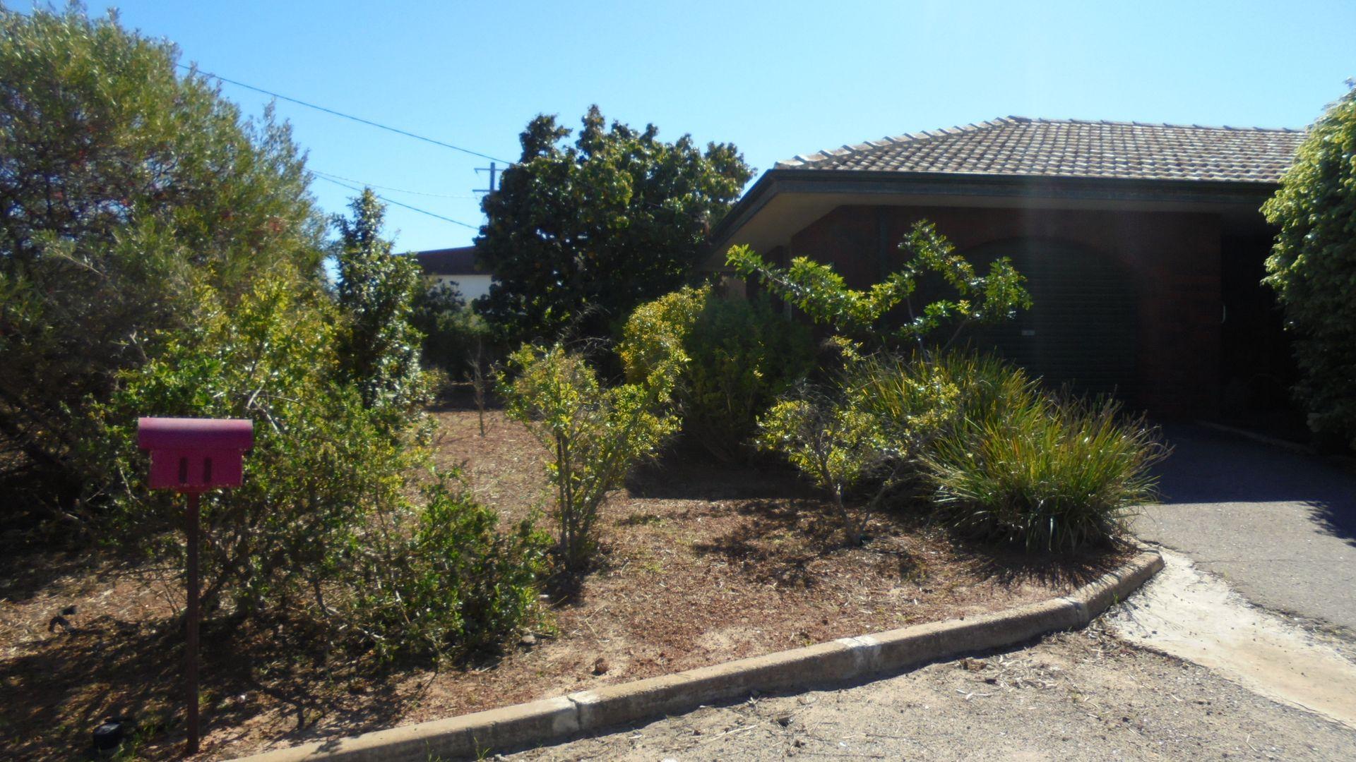 11 Thomas Avenue, Geraldton WA 6530, Image 2