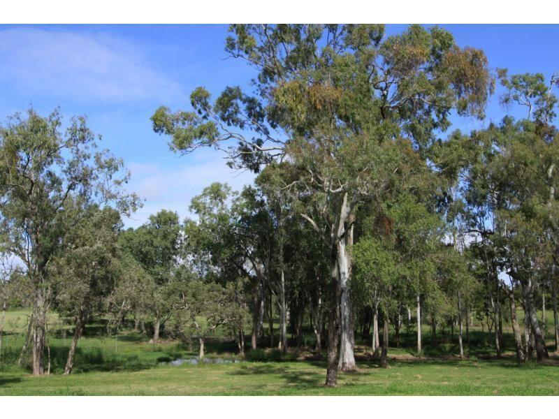 46 MacGregor Street, The Range QLD 4700, Image 2