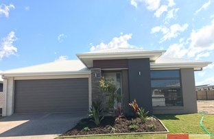 7 Locke Crescent, Bells Creek QLD 4551