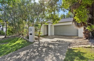 Picture of 19 Blackwattle Circuit, Arundel QLD 4214