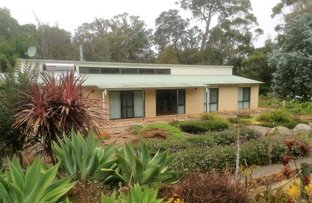 Picture of 46 Red Tingle Drive, Walpole WA 6398