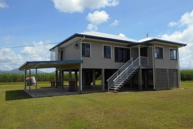 Picture of 271 Cooks Lane, VICTORIA PLANTATION QLD 4850