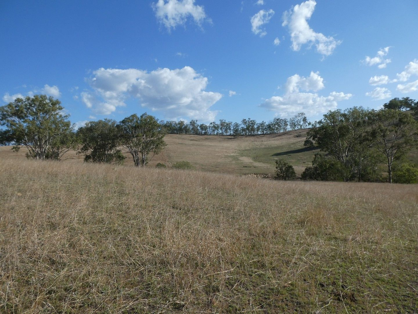 266 ROCKY CREEK ROAD, Mount Perry QLD 4671, Image 0
