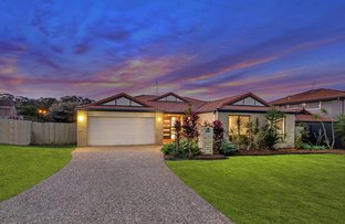 Picture of 9 Bluetail Crescent, Upper Coomera QLD 4209