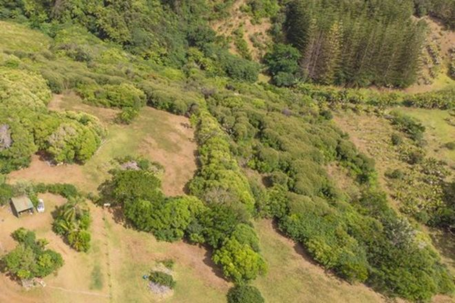 Picture of Portion/59i 59h1 Ferny Lane, NORFOLK ISLAND NSW 2899