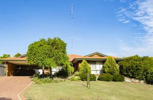 Picture of 17 Nielson Grove, Carey Park WA 6230