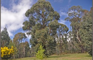 Picture of 1 Kings Road, Marysville VIC 3779