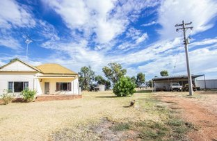 Picture of 123 Red Hill Road, Narrandera NSW 2700