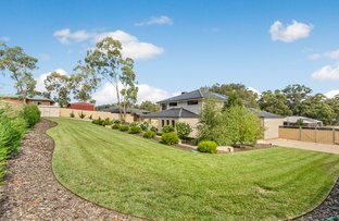 Picture of 5 Saddle Court, Maiden Gully VIC 3551