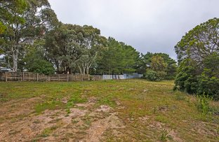 Picture of 29 Briardale Avenue, Enfield VIC 3352