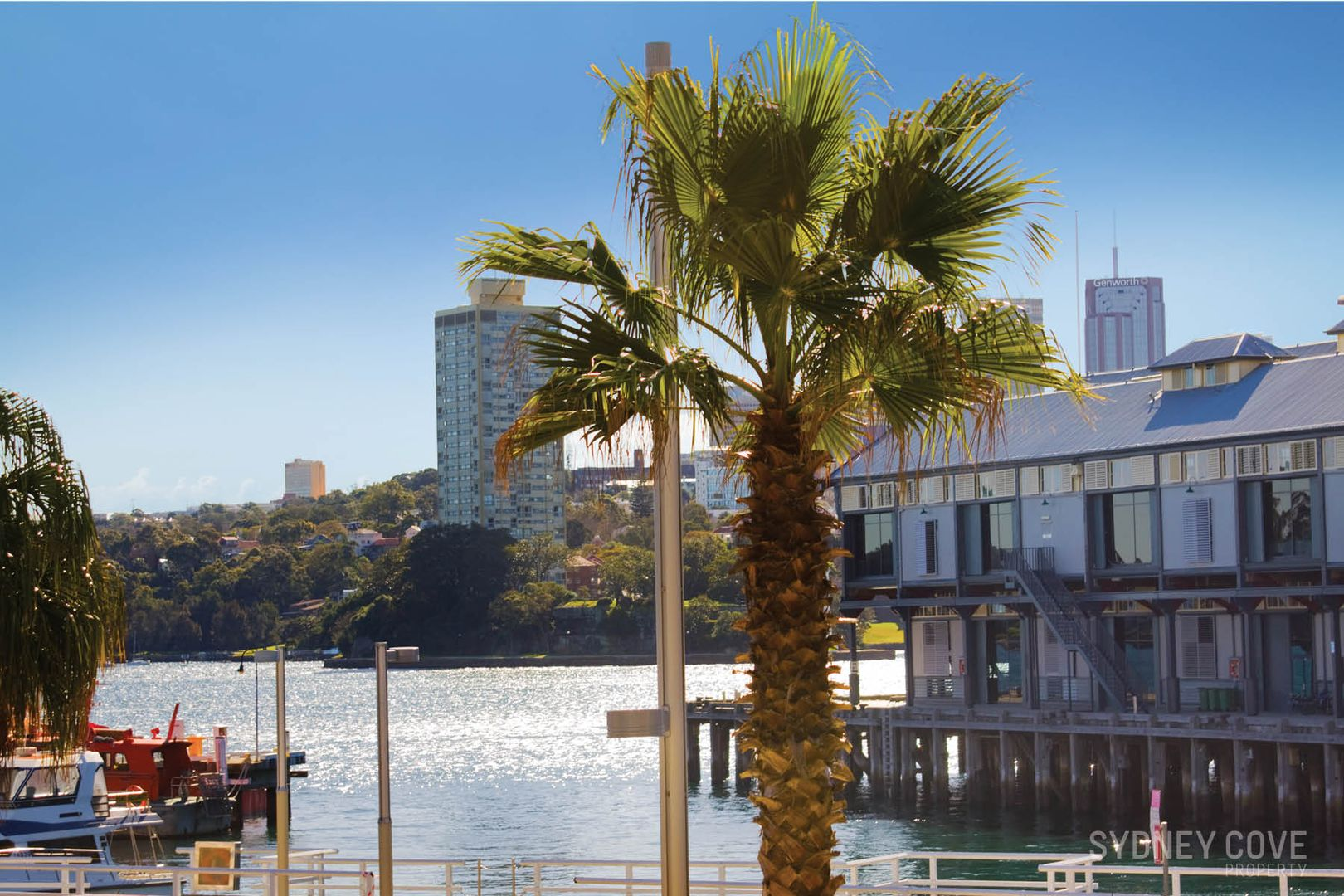 14/5 Towns Place, Walsh Bay NSW 2000, Image 1