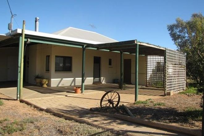 Picture of 65 Forward Avenue, LOVEDAY SA 5345