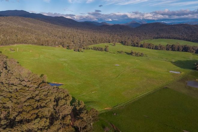 Picture of Coopers Track, KING VALLEY VIC 3678