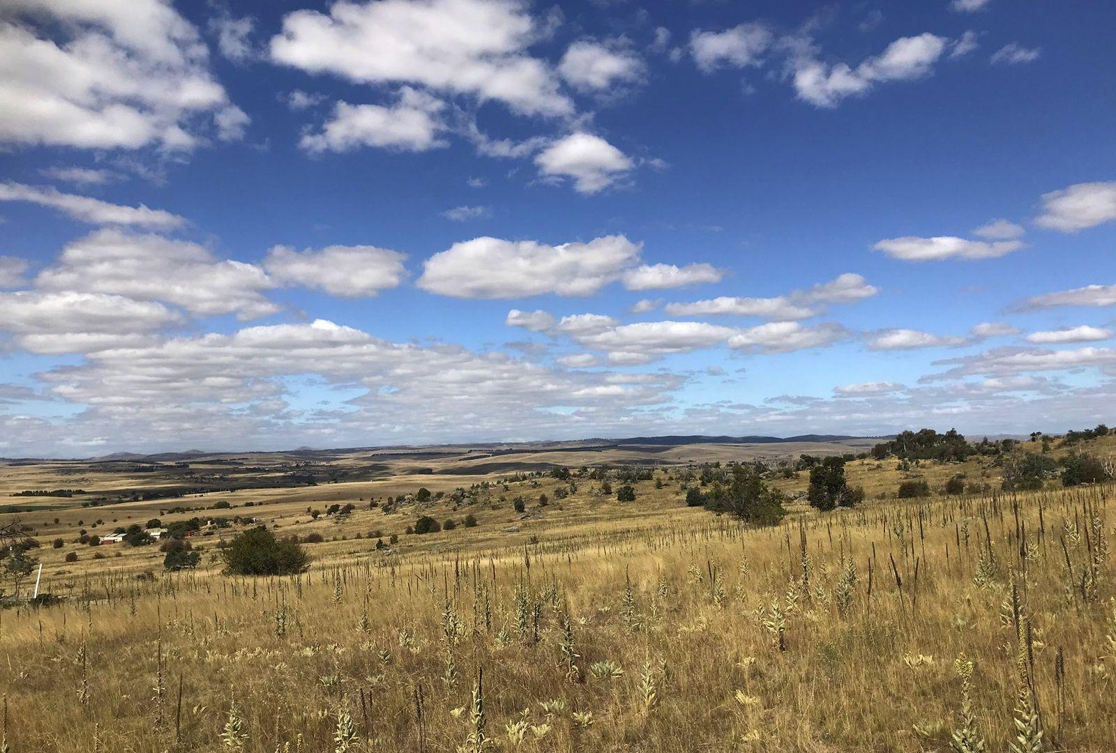 Lot 2 Bobundara Road, Berridale NSW 2628, Image 1