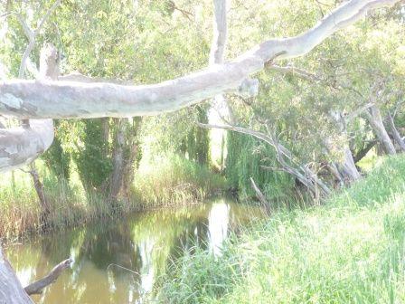 102 Brial Road, Boorowa NSW 2586, Image 0