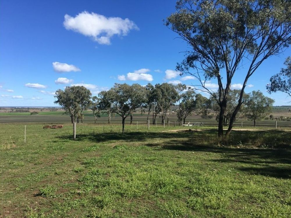 Lot 3116 Scrubby Road, Pittsworth QLD 4356, Image 2