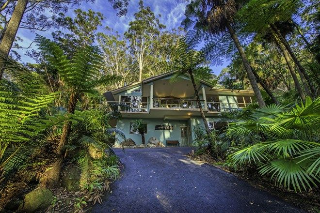 Picture of 46 Fern Tree Close, ARAKOON NSW 2431