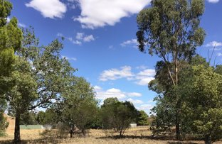 Picture of Lot 4 Lachlan Street, Boree Creek NSW 2652