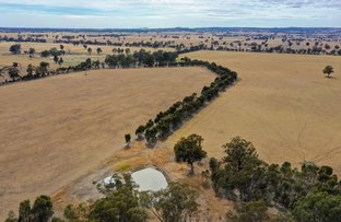Picture of Federation Way, Boorhaman VIC 3678