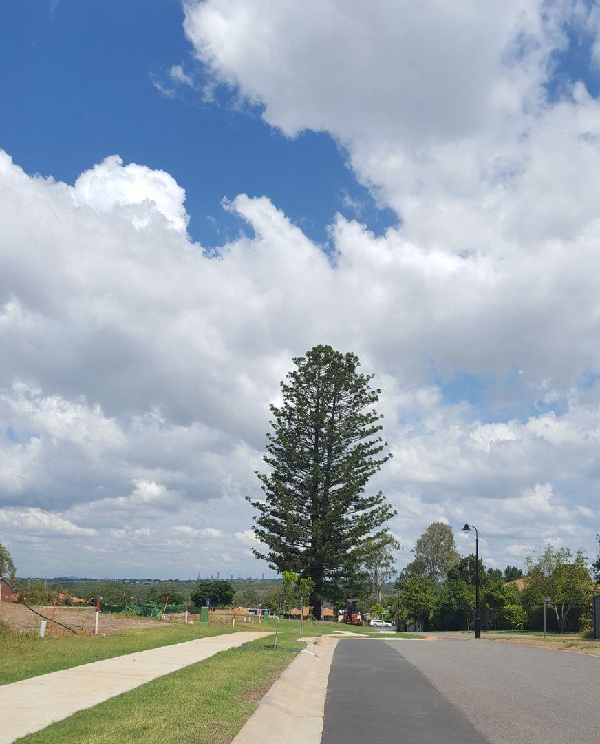 Bracken Ridge QLD 4017, Image 2