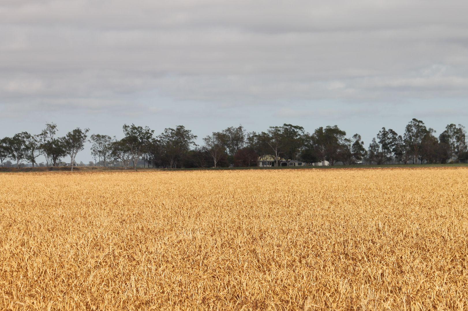 16860 Warrego Highway, Bowenville QLD 4404, Image 2