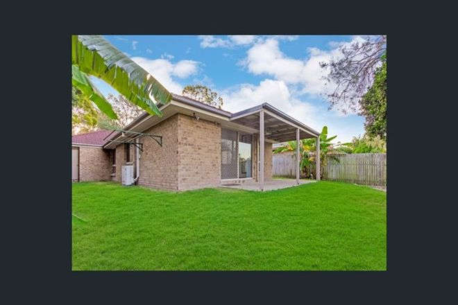 Picture of 51 Serrata, FOREST LAKE QLD 4078
