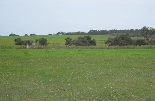 Picture of Lot 1 Myrup Rd, Myrup WA 6450