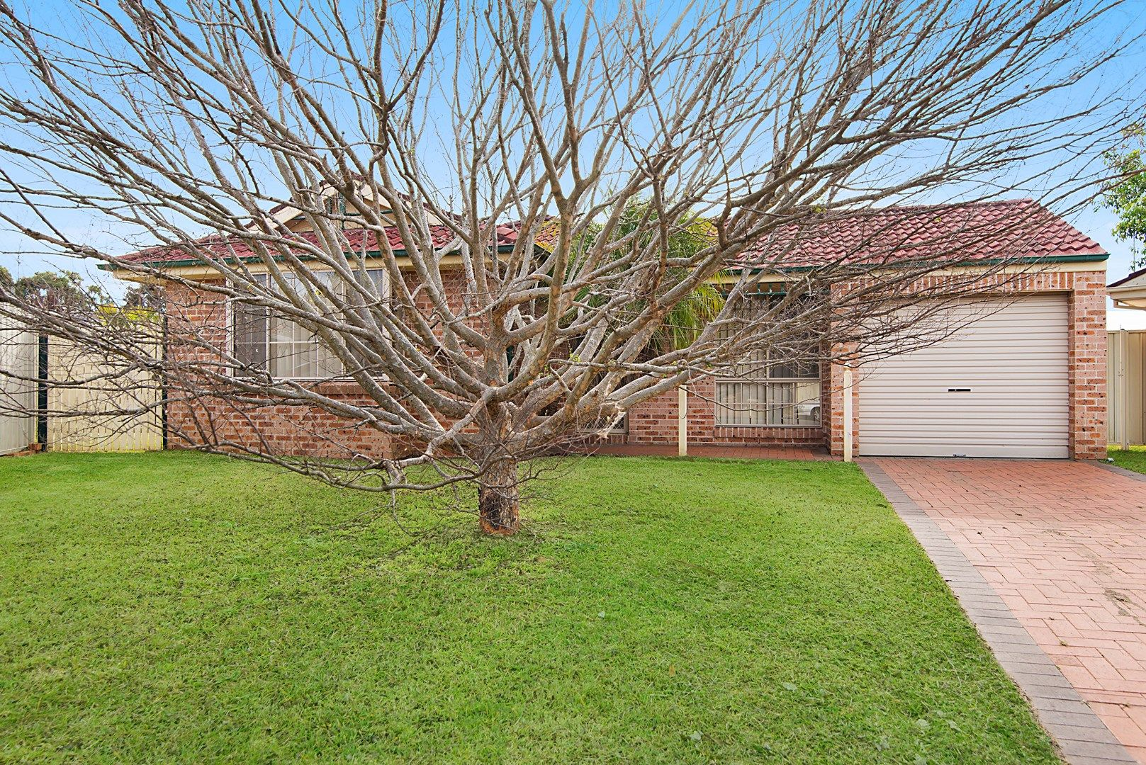 5 Clyde Cl, Bateau Bay NSW 2261, Image 0