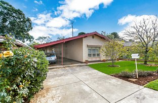 Picture of 20 Fraser Street, Lower Mitcham SA 5062