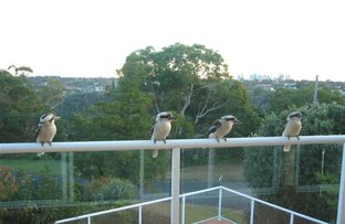 Picture of 138 George Downs Drive, Central Mangrove NSW 2250