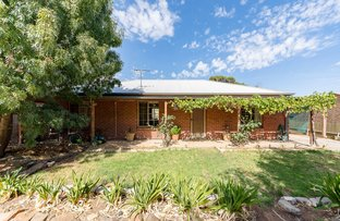 Picture of 129 Hurling Drive, Mount Barker SA 5251