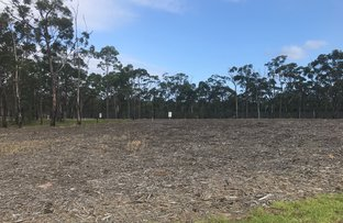 Picture of Lot 902 Castaway Crescent, Teralba NSW 2284