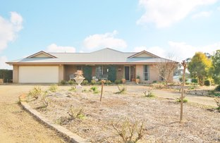 Picture of 81 Tipperary Lane, Young NSW 2594