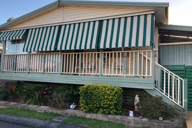 Picture of 152/314 Buff Point Ave, BUFF POINT NSW 2262