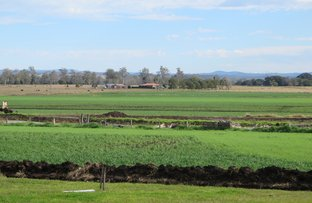 Picture of 80 Strongs Road, Fairy Hill NSW 2470