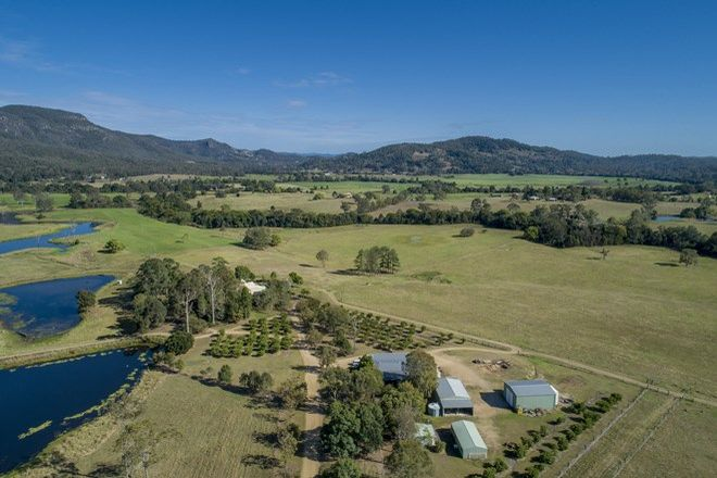 Picture of 41 Moy Pocket Road, GHEERULLA QLD 4574