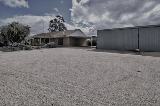 Picture of 49 Alamein Avenue, LOXTON SA 5333