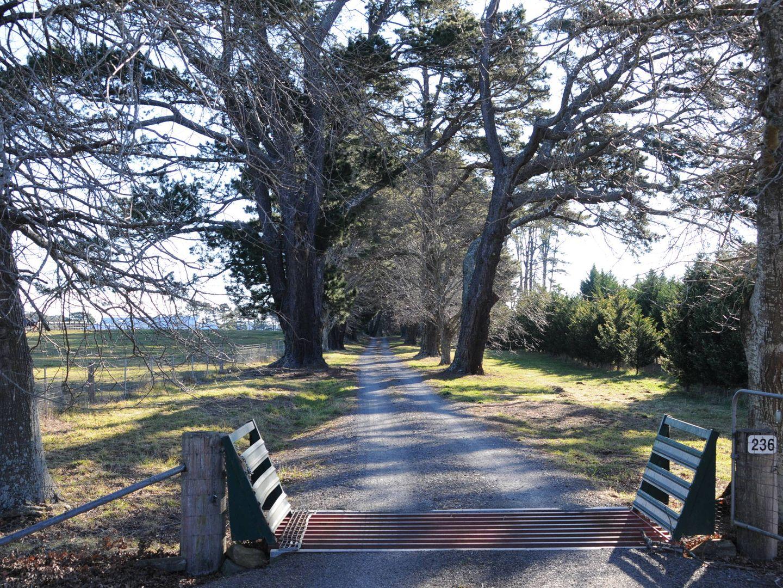 236 Bundanoon Road, Exeter NSW 2579, Image 0