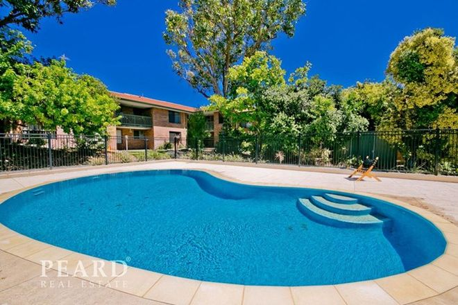 Picture of 5/33 Stanley Street, SCARBOROUGH WA 6019