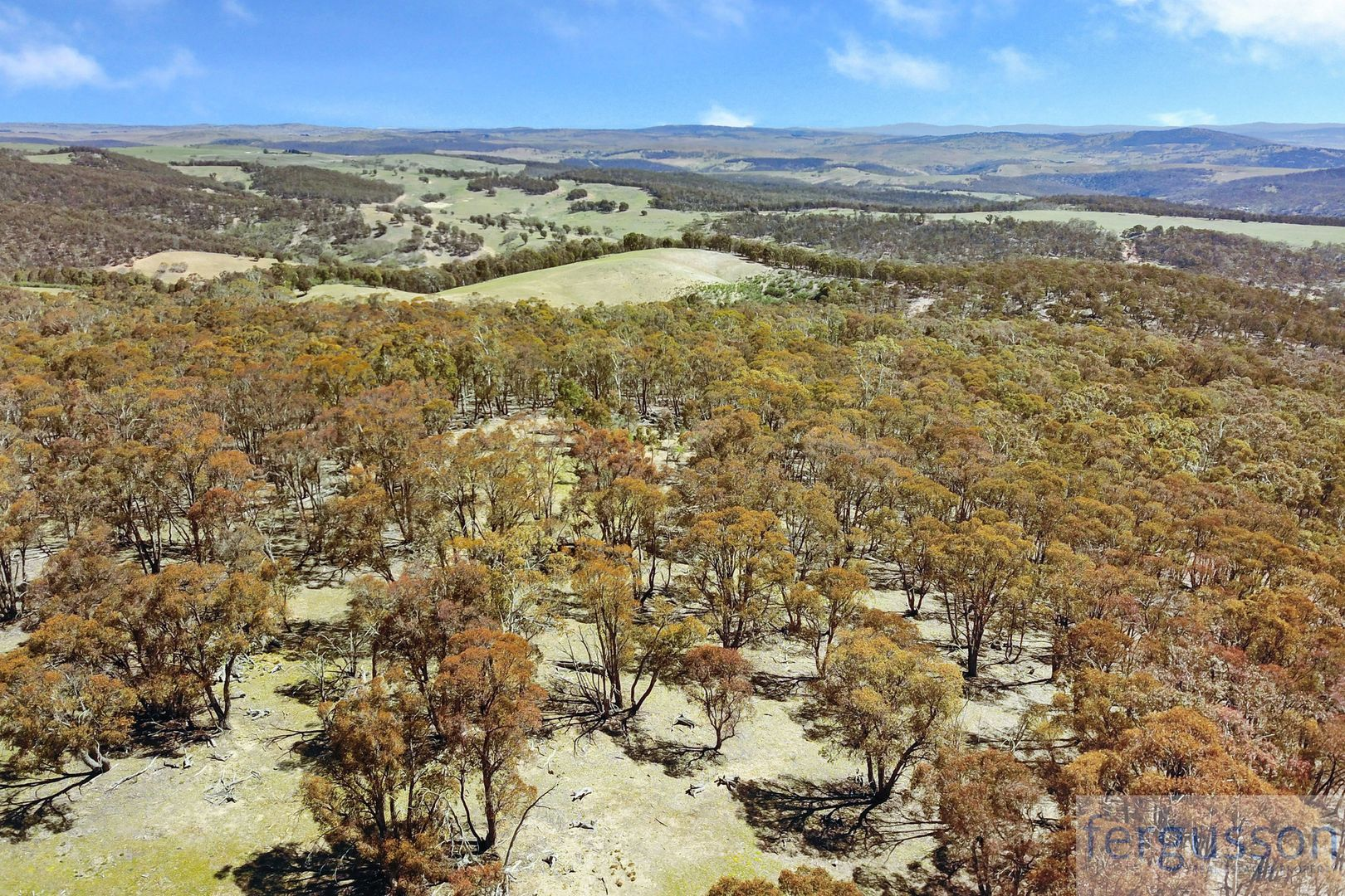 Lot 2 Shannon's Flat Road, Cooma NSW 2630, Image 2