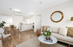 Picture of 7/62 Elizabeth Street, Ashfield NSW 2131