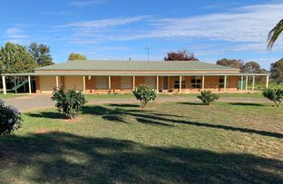 Picture of YOUNG ROAD, Grenfell NSW 2810